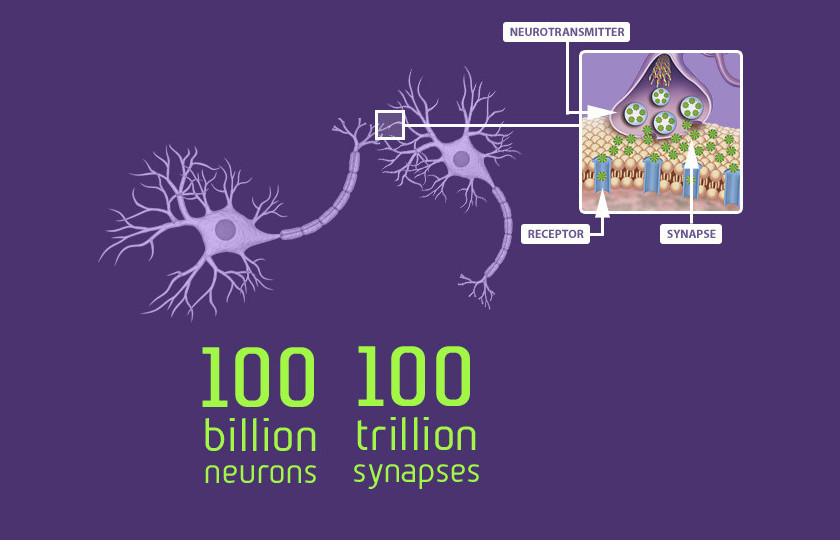 tiles-neurons